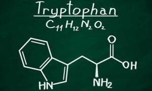 Триптофан и серотонин: как улучшить свое самочувствие? — Красота ума